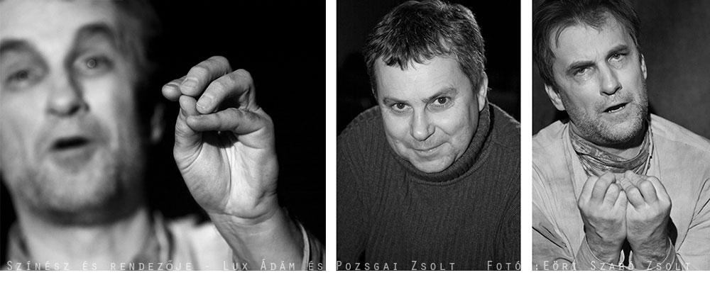 Lux Ádám és a rendező, Pozsgai Zsolt